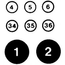 Black & White Circled Numbers Transfer Sheet
